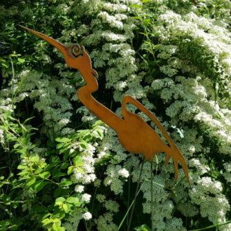 Garden Heron Head Up