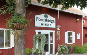 Annual Art Fair at Forestedge 2018